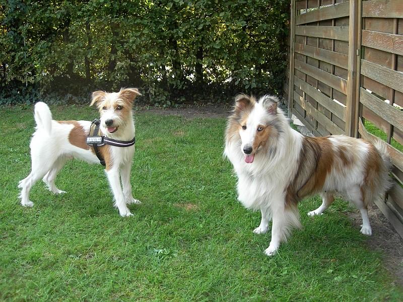 Fritz(i) & Fenja