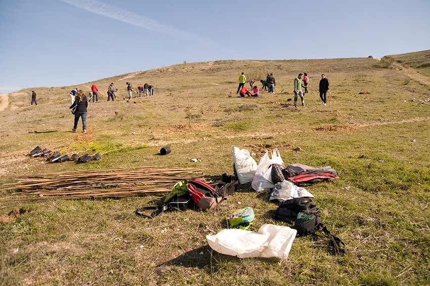 Iniciativa vecinal para reforestar el Cerro de Almodóvar.