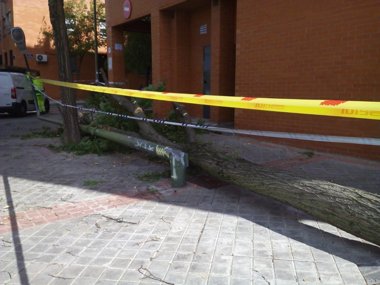 (Fotos: PSOE Vicálvaro)