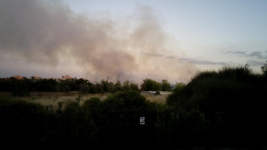 Incendio en el parque de Valdebernardo. 10 de octubre de 2013. Imagen de Maria Antonia Plazuelos