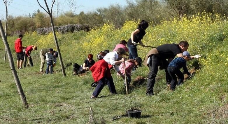 Marzo 2011. Plantación reivindicativa de árboles en Valdebernardo.