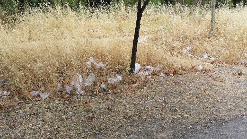 """Esther Bajo envía esta imagen y cuenta que """"una siembra de guantes de plastico. Y esto es solo una muestra,da pena verlo...suciedad, contaminacion...a ver si los usuarios nos civilizamos y concienciamos un poco de estas cosas y a quien corresponda en ..."""""""