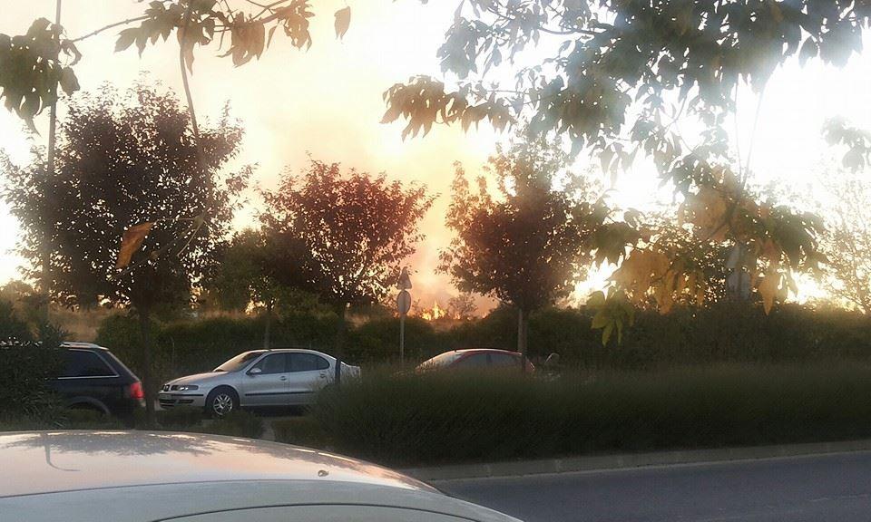 Incendio en el parque de Valdebernardo. 10 de octubre de 2013. Imagen de @kiske73