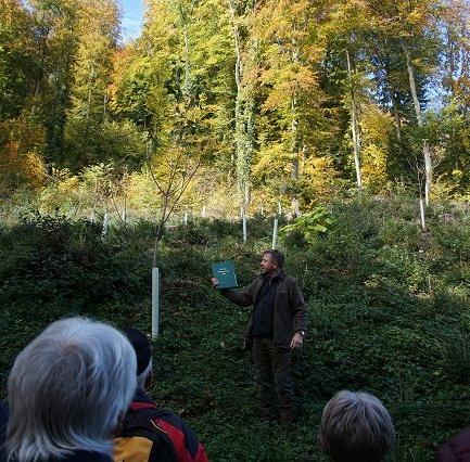 Der Brugger Forstbetriebsleiter erzählt von der Waldbewirtschaftung.