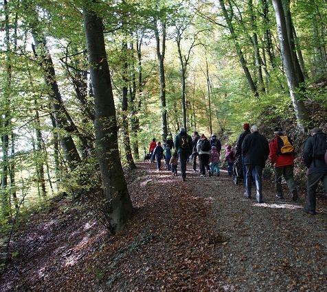Kinder und Erwachsene nehmen am Waldrundgang teil.