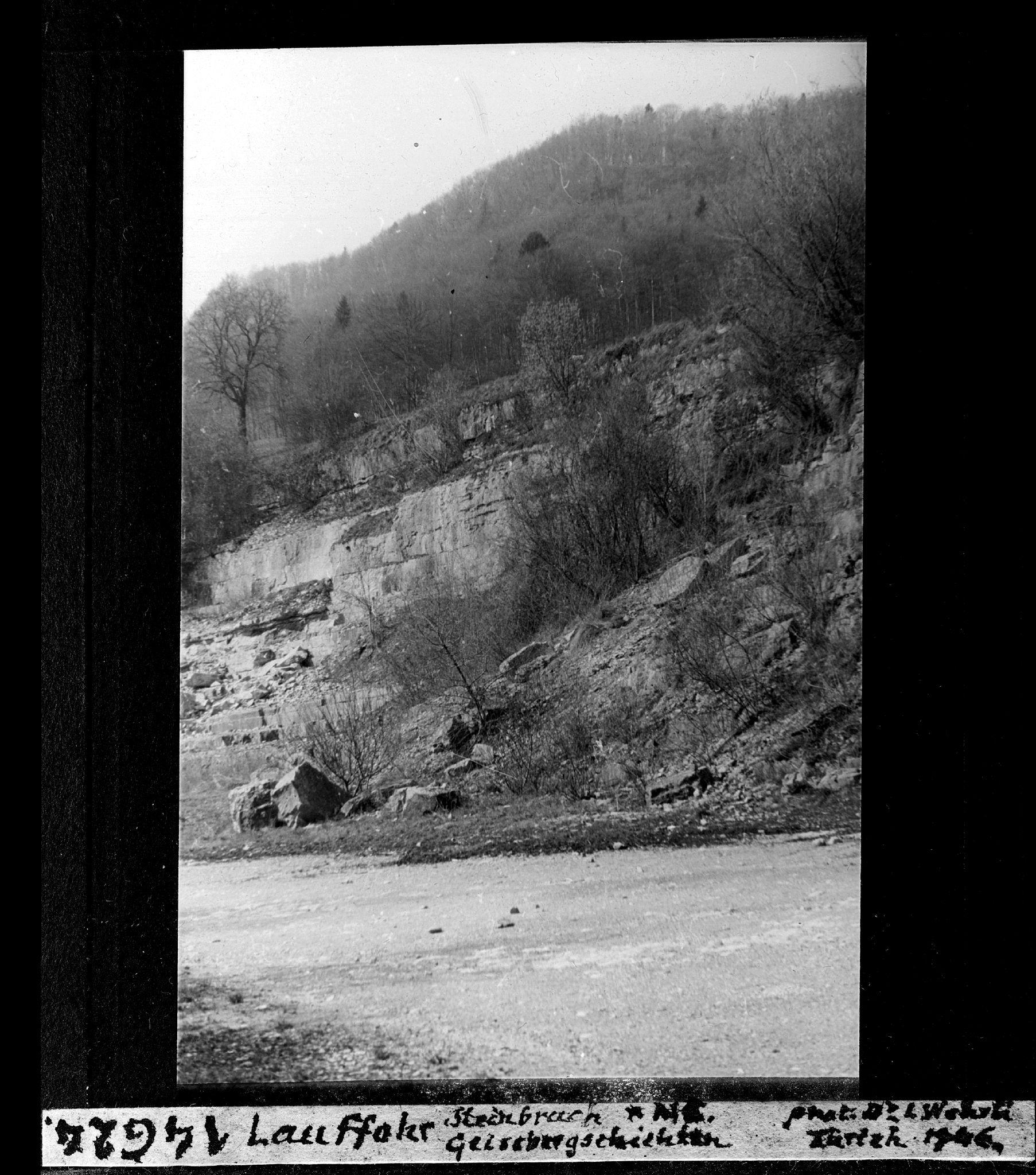 1946 - Steinbruch Lauffohr (Quelle: ETH-Bibliothek, e-pics.ethz.ch)