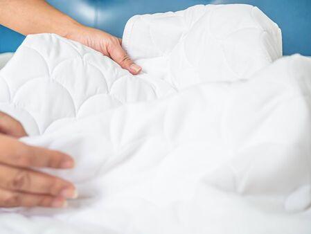 Entreprise experte en punaise de lit : comment choisir la meilleure?