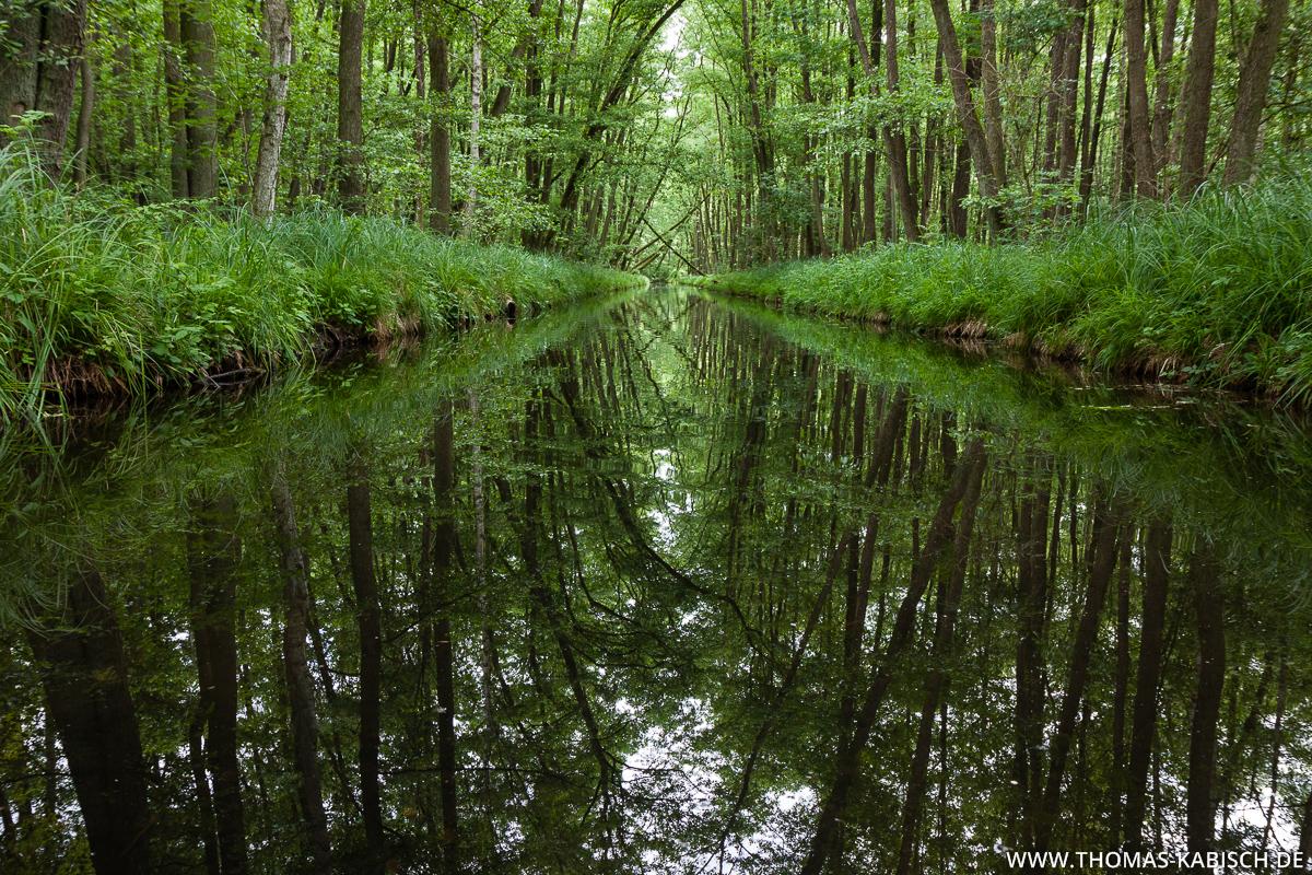 Kanutour Mecklenburg - Fotografieren vom Boot
