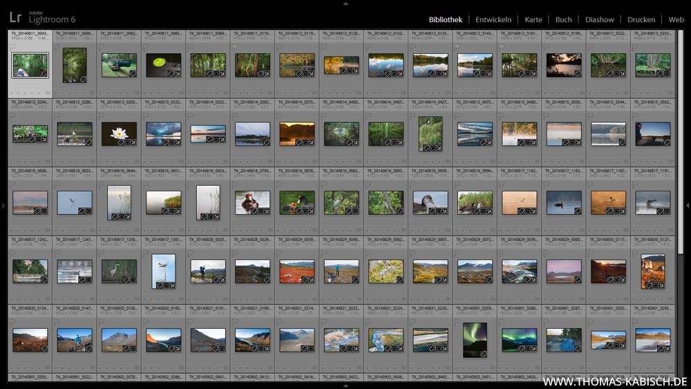 Bilder verwalten sichern archivieren