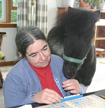 Alexandra Kurland und Panda, das Blindenführpony