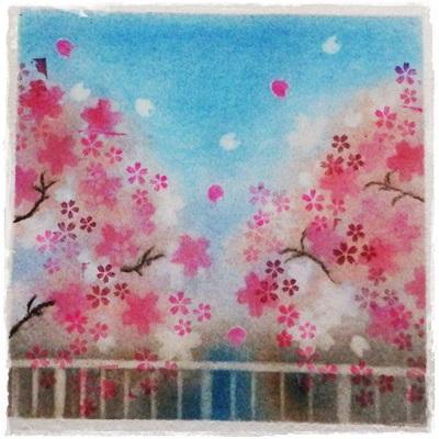 神田川の桜 ★★★