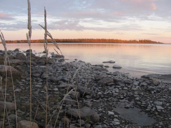 Magisches Licht: Der schwedische Herbst