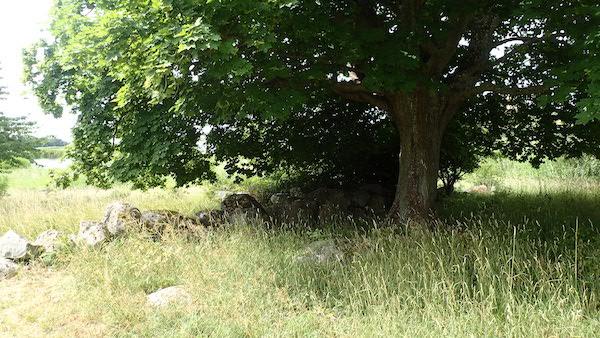Steinmäuerchen auf Lindholmen...