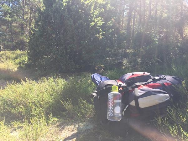 Wanderrucksack im Wald mit Sonnenstrahlen
