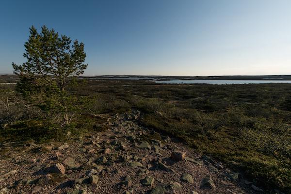 Nahe Fulufjället, Dalarna, Schweden