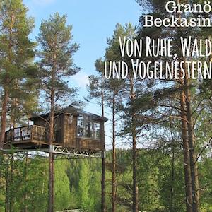 Blogpost: Granö Beckasin - Ruhe, Wald und Vogelnester auf schwedenundso.de