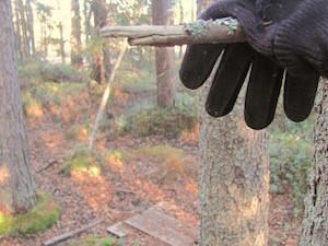 Der Handschuh.