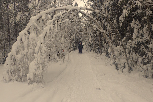 Schweden im Winter, High Coast Winter Classic, Schneeschuhwanderung