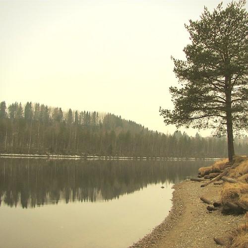 Norrfors bei Umeå.
