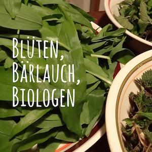 Blogpost: Blüten, Bärlauch, Biologen auf schwedenundso.de