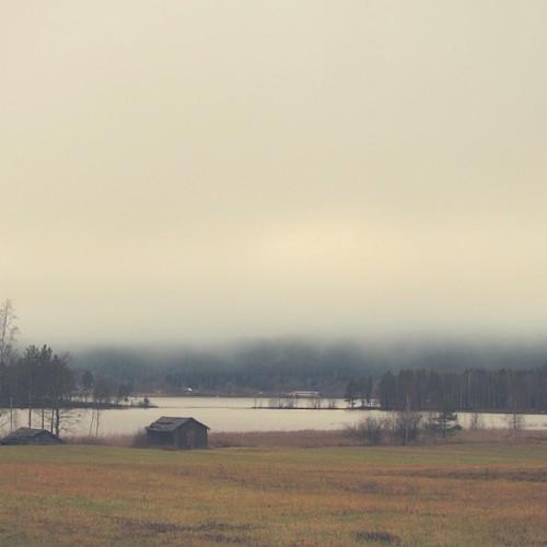 Das Ungeheuer vom Tavelsjö