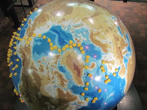 Reise der Badeenten durch die Ozeane im Meeresmuseum in Stralsund