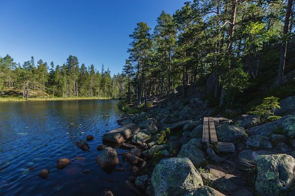 Der Hohe Küste Wanderweg in Schweden (5 Tipps)