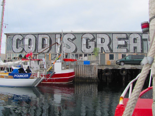 """Cod is Great"", Fishing harbor Vardø, Norway"