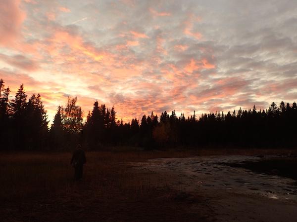 Herbstszene Schweden