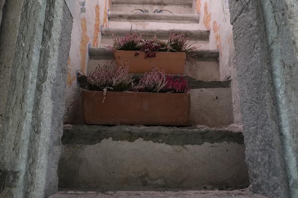 Steintreppe mit Blumen in Tallinn