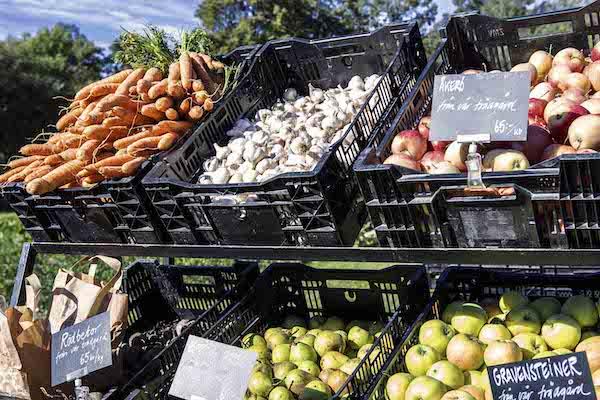 Gemüseauswahl, Rosendals Trädgård in Stockholm