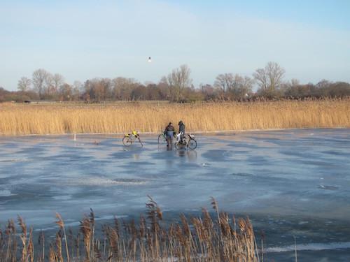 Reiher und Radler auf zugefrorenem Ryck im Januar.