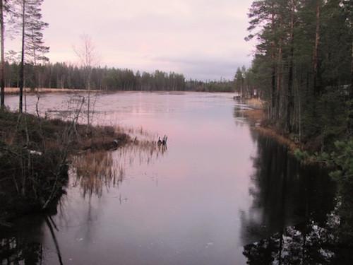 Sonnenuntergang am Tavelsjö.