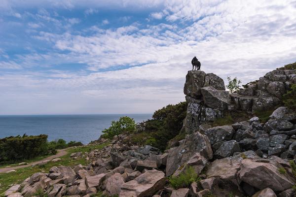 Hündin Tessa in Hovs Hallar - Naturreservat an der Westküste Schwedens