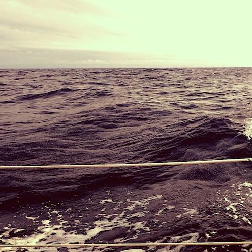 A Voyage for Madmen und Deep Water - Buch und Filmtipp!