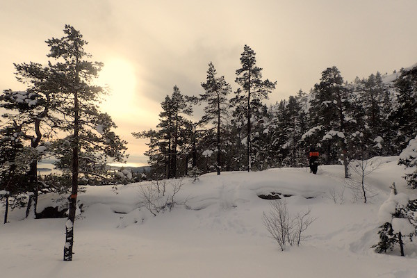 Skuleskogen Nationalpark im Winter, High Coast Winter Classic
