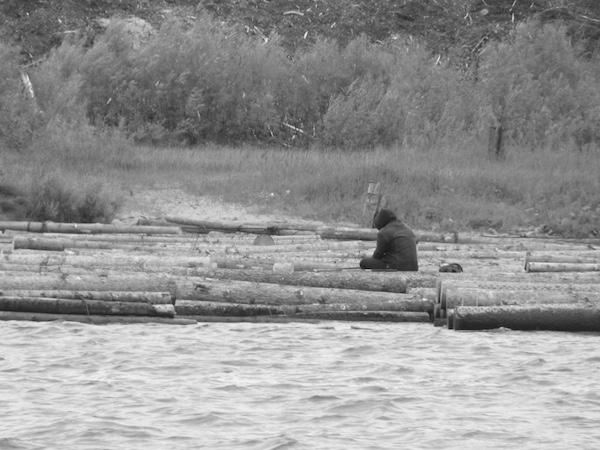 Holzstämme im Kanal von Arkhangelsk