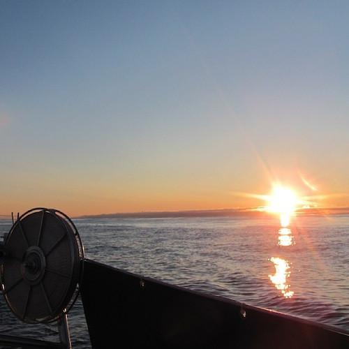 Von Vardø nach Archangelsk segeln.