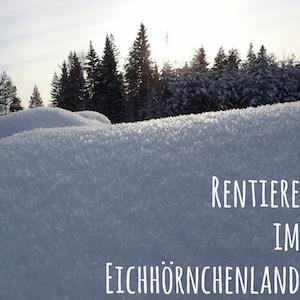 Blogpost: Rentiere im Eichhörnchenland auf schwedenundso.de
