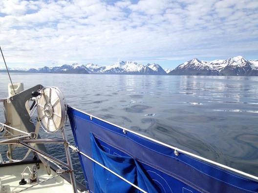 Segeln in Norwegen: Blick von Pouncer auf die Küste