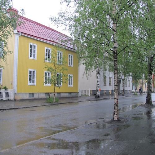 """Blogpost """"Birken im Regen"""" auf www.schwedenundso.de"""