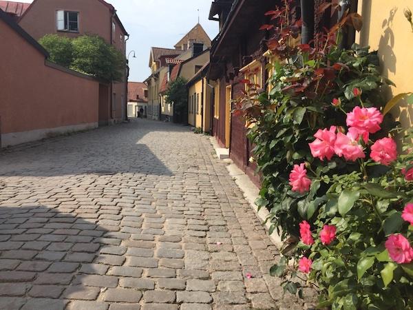 Kopfsteinpflaster Gasse mit Rosenbepflanzung in Visby auf Gotland, Schweden
