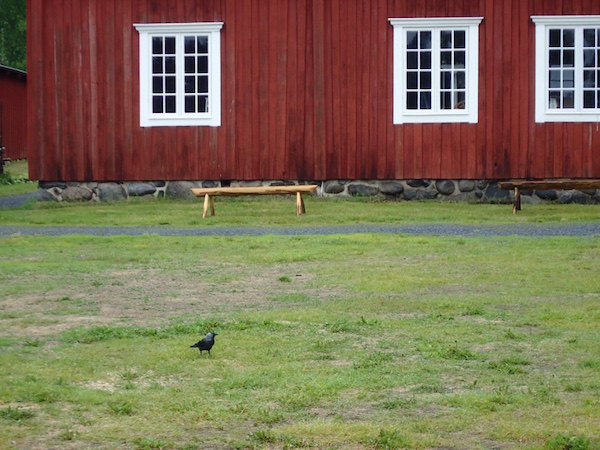 Rotes Haus und Dohle Freilichtmuseum Gammlia, Umeå