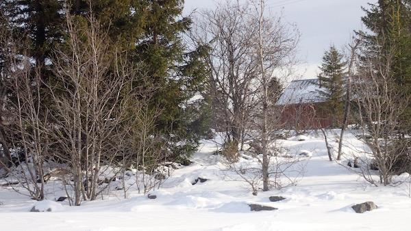 Schwedische Winterszene