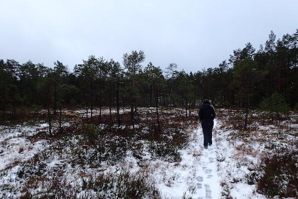 Spaziergang am Kilsbergen