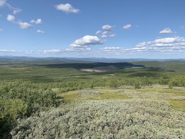 Der Fjäll bei Kiruna | Foto: Ekaterina Venkina