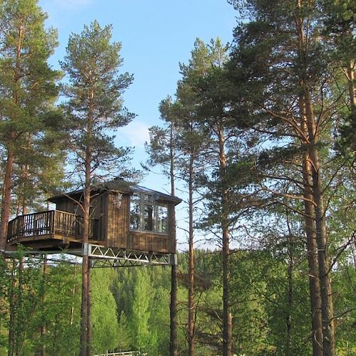 Granö Beckasin - Von Ruhe, Wald und Vogelnestern