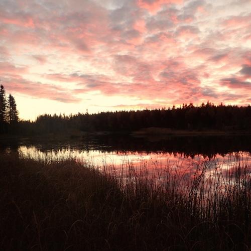 Rosaroter Sonnenuntergang - Herbst in Schweden