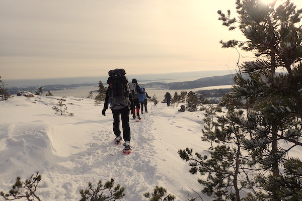Skuleskogen Nationalpark im Winter, High Coast Winter Classic, Schneeschuhwanderung