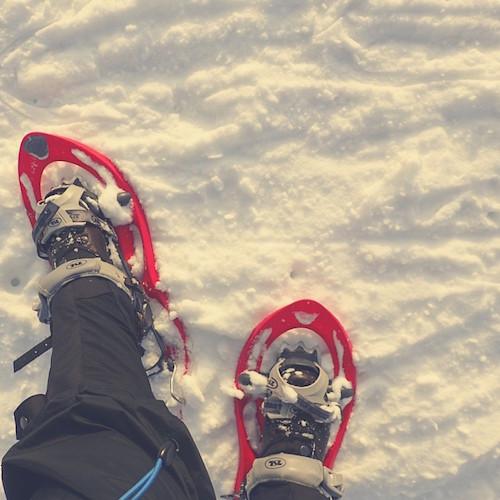 Schneeschuhwandern. Erfahrungen und Tipps